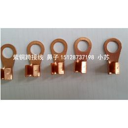 紫铜材质法兰跨接线河北厂家