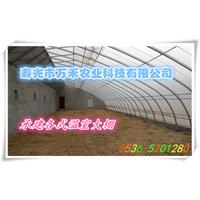 花卉大棚-冬暖式几字钢大棚-寿光市万禾农业