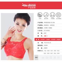 2015元旦蒂億曼义乳厂家供应新款纯棉义乳文胸批发加盟
