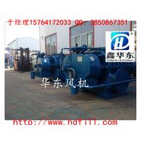 萍乡锅炉除尘鼓风机厂家锅炉除尘罗茨鼓风机参数及选型