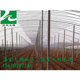 温室建设寿光市万禾农业冬暖式棉被拱棚
