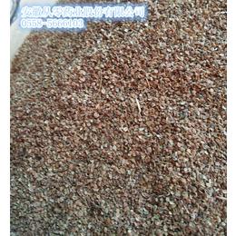 蛇床子大量供应优质蛇床子
