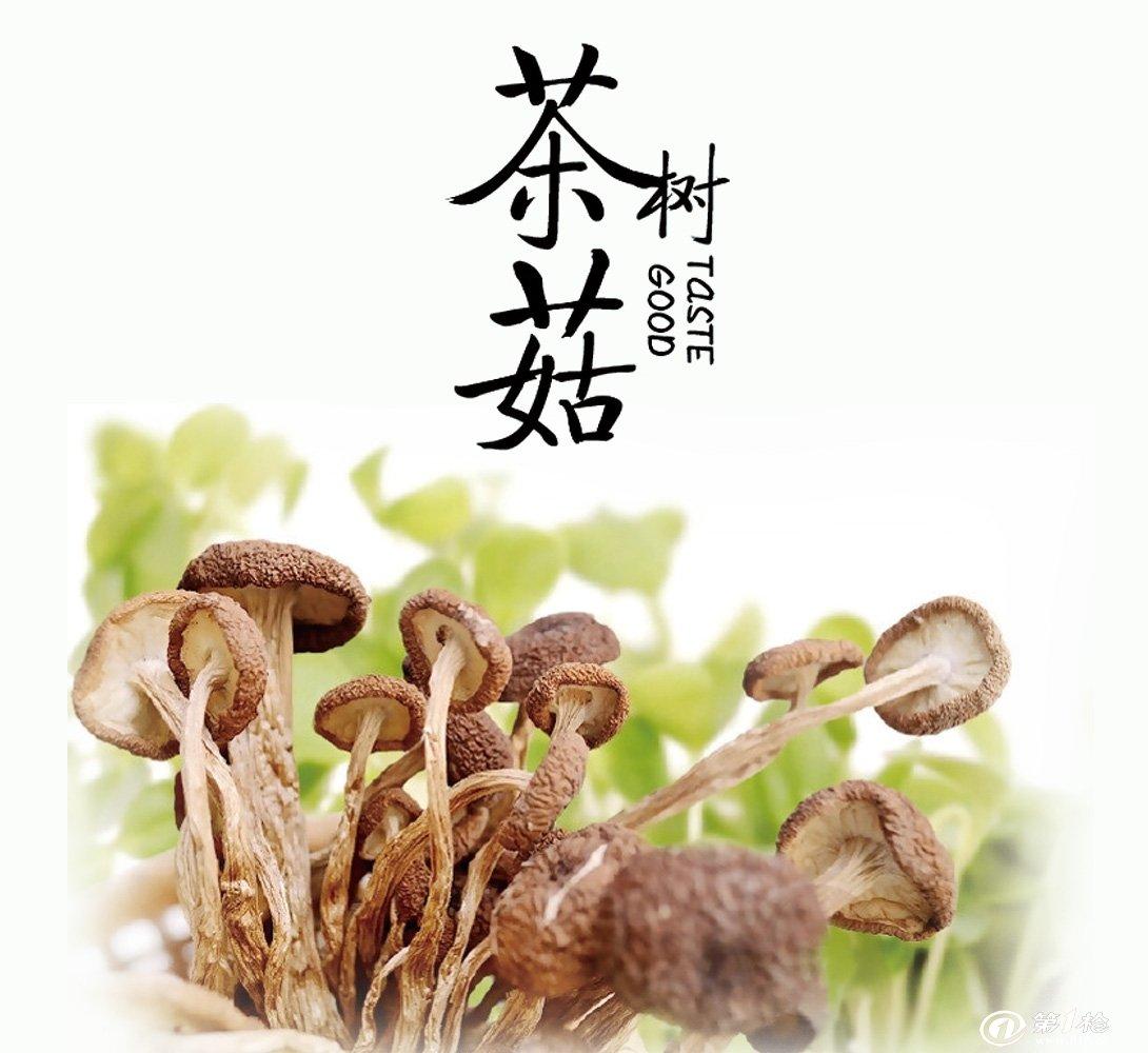 新货农家特级茶树菇干货 厂家直销110g装批发价格团购更划算