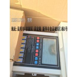 禾瑞密集烤房控制器 烤烟专用智能烘干控制器云南低价促销
