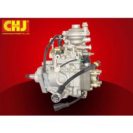 CHJ 104741-6250 总成VE分配泵零件