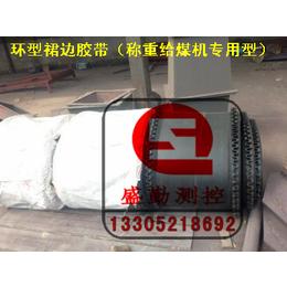 裙边环型胶带   耐高温阻燃型  给煤机专用胶带