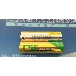 AA碱性电池,5号碱性电池,LR6电池,加入WERCS系统   ROHS
