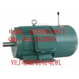 YEJ电磁制动电机YEJ225M-45KW-2****电动机