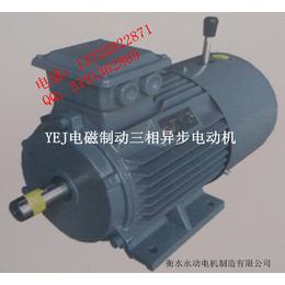 YEJ180L-15KW-6极电磁制动电机永动厂家直销