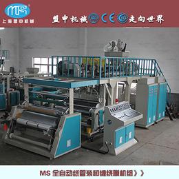 上海盟申自动拉伸缠绕膜机双层共挤线性PE流延膜机缠绕膜机