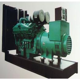 仁源动力柴油发电机组