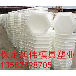 工程六角护坡砖模具生产厂家