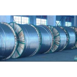 供应其他LGJ JL/G1A  GJ 钢芯铝绞线生产厂家