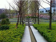 現代園林綠化案例