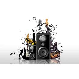 Module Audio魔族音响