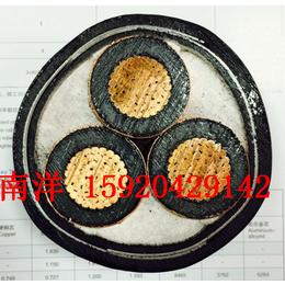 广州南洋电缆 国标低压 WDZ-YJY 低烟无卤电缆