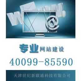 天津官网设计,企业官网设计,世纪新联通(多图)缩略图