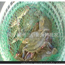 供应烟台莱州大连梭子蟹 鲜活海蟹、海捕螃蟹、各种<em>蟹</em><em>类</em>批发零售