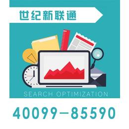 seo_世纪新联通_河北网站优化seo公司