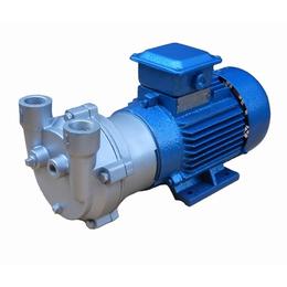 广州广一泵业真空泵型号液环真空泵循环水真空泵