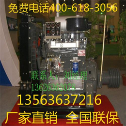 潍柴雷纳柴油机(图) 雷纳6105柴油机 河南柴油机