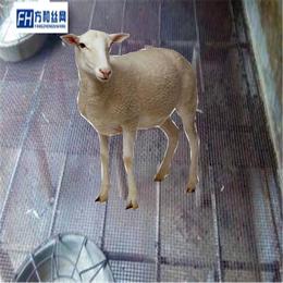 钢丝热镀锌轧花养殖网漏粪网生产厂家