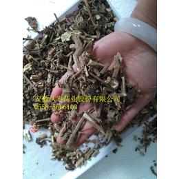 广藿香优质中药材广藿香