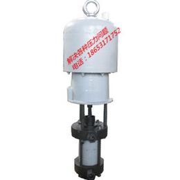 大流量高压力流体输送泵柱塞泵 大流量流体粘稠