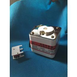 芬隆RS79快速熔断器订做
