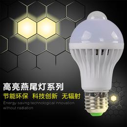 华涌LED应急球泡灯遇水能亮神奇灯泡5W消防照明节能灯