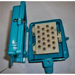 慈溪市 50对室内电话分线盒