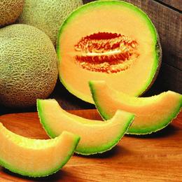 新鲜水果批发 哈密瓜