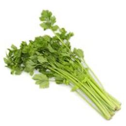 新鲜蔬菜小芹菜批发价格