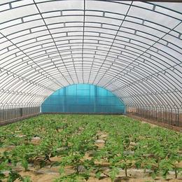 设计建设智能温室销售温室大棚配件