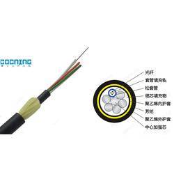 黑龙江ADSS-24B1-100光缆