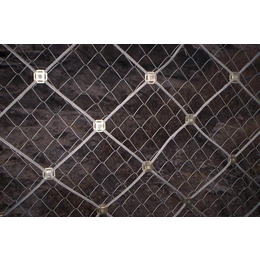 供应主动防护网种类主动防护网价格主动防护网厂家