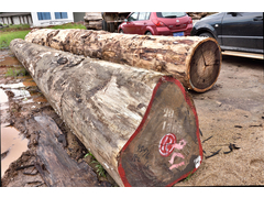轩源红木家具定制木料