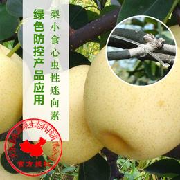 梨小食心虫性迷向丝丨果树食心虫丨生物防治梨小食心虫丨嘉禾源硕