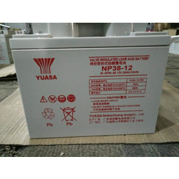 配电柜配套铅酸蓄电池 汤浅蓄电池12V38ah常规现货报价