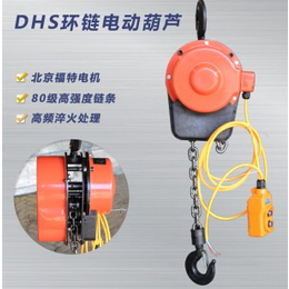 DHS电动葫芦DHP电动葫芦 环链电动葫芦河北悍象生产厂家