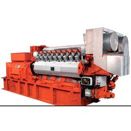 美国GE瓦克夏燃气发电机组