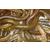 淡水草鱼苗批发观赏锦鲤鱼苗价格放生泥鳅鱼苗批发价格缩略图3
