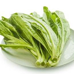 新鲜蔬菜油麦菜批发价格