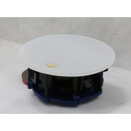 上海玖间堂Speechlink语音智能音箱高保真同轴吸顶音箱