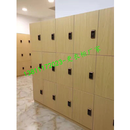 更衣柜厂家直销木质更衣柜pvc更衣板式家具