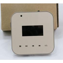 上海玖间堂Speechlink语音智能家庭背景音乐主机安装