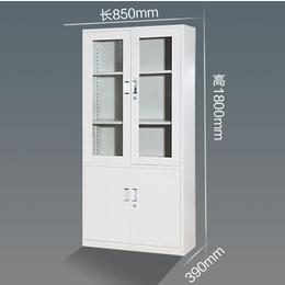 玻璃文件柜 石家庄文件柜 通体玻璃柜