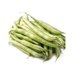 新鲜蔬菜四季豆批发价格