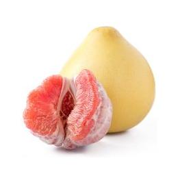 新鲜水果 红心柚批发价格