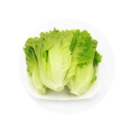 新鲜蔬菜生菜批发价格